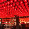 台湾最大級の夜市「士林夜市」でB級グルメ三昧
