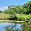 嶺公園の釣り池(群馬県前橋)