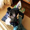 スキーウェア洗濯