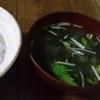 セリ・ナズナ・ゴギョウ・ハコベラ・ホトケノザ・スズナ・スズシロ ~七草粥~