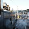 お正月旅行:終点、新金谷駅で初めて転車台で方向転換するのを見学