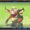 【ゼルダの伝説ブレスオブザワイルド】ボコブリンのかわいさに気づく(画像多め)【ウツシエ日記】