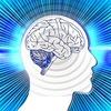 HSPでも発達障害でも精神疾患でもそれぞれが脳の個性だと思っている