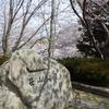 笹山公園 〜 続リベンジ 〜