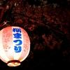 03/28 豊川 佐奈川 桜