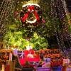 クリスマス限定・本物のトナカイがやってくる~「王国のメリークリスマス」神戸