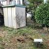 カフェ【MOU】の裏庭の草刈り。電動草刈り機はゴーグルしようね