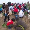 ジャガイモ掘りを楽しみました
