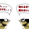 絶好調!!野島沖堤防ハアハア祭り3日目後半!!(*´Д`)