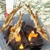 小林さんちのメイドラゴンS 9話  鮎を食べるエルマ 他
