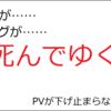 【月間PV報告】2019年2月のPVと収益【ブログ開始1年11ヵ月目】
