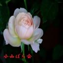 小山ばら会のブログ