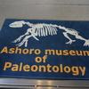 足寄動物化石博物館へ♪子供も大人も楽しめる化石体験がおすすめです☆