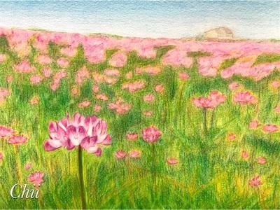 まだまだ寒いけれど暦の上では立春〜蓮華畑の絵が完成しました〜
