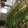 発現 北京四合院之美