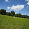 天気が良かったのでOlympus Airと魚眼レンズを持って公園に