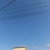 12/18日曜日・年賀状やりながらオムツの発注する