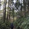 熊野古道・初心者はここを歩こう!!ずっと下り、もっとも歩きやすく、美しく整備されたコース:発心門王子から熊野本宮大社7kmの歩き方!!