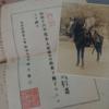 🈺物部村歴史民俗資料館@香美市🈺