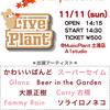 11/11(日) Live Plant 出演者紹介⑥ かわいいばんど