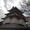 そう言えば桜の時期に関宿博物館に行ってた件