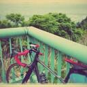 ロードバイクと徒然日記