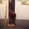 00024『動物木彫:キリン』(【ケニア】ハンドカービング)