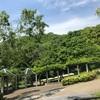 【子連れ】関西近郊の公園へお出かけ~神戸総合運動公園~