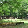 大和田で保育園探しするなら必見!保活完全マニュアル