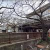 動画!東京メトロ日比谷線の中目黒駅で線路内立ち入り発生!理由は?