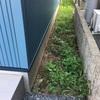 [日記]家の周りが草ボーボーなので「草むしり&除草剤」攻撃!