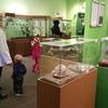 【旅行記・番外1】ビクトリアのVictoria Bug Zoo(昆虫動物園)