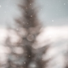 大阪にも雪が!!!