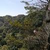 木ノ袋尾根の岩場