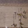 桜と、【鼻がきく人たち】(匂いの人類学より)