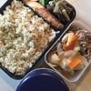 252日目 牛鮭玄米弁当