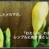 本日10/28(土)20時配信予定メルマガのお知らせ
