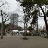 東京マラソン2018 ボランティア参加