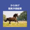 【競馬予想結果】中京記念、函館記念