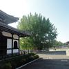 京都旅行記 その5 大谷本廟・西本願寺ほか