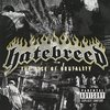 Hatebreed 「The Rise Of Brutality」