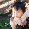 知育玩具おすすめベスト8(1歳2歳3歳)