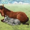 【ダビマス】繁殖牝馬 ウィルロック編