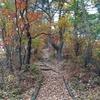 坂田共生の森ハイキング