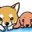 【犬と暮らす意味って?】真希ナルセ先生、銀次郎さん・グミさん 〜私の大好きな漫画家さんと愛犬さんへ〜