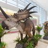 広島空港で恐竜展!待ち時間に化石に触ったり恐竜体験ができる!