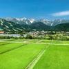 白馬村の夏景色。