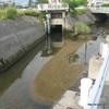 川に挟まれた樋門