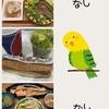 【37w4d】17/06/30の食事