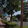 真砂町(和歌山市)